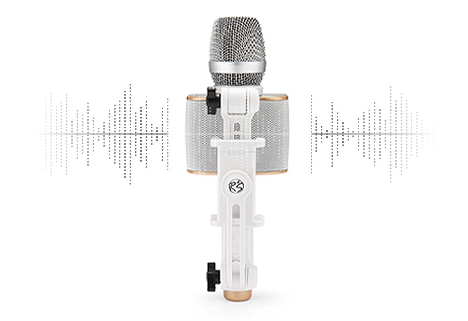 partier mic stick sound