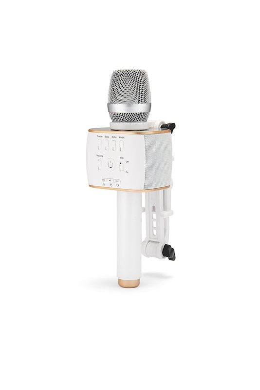 partoer-mic-002